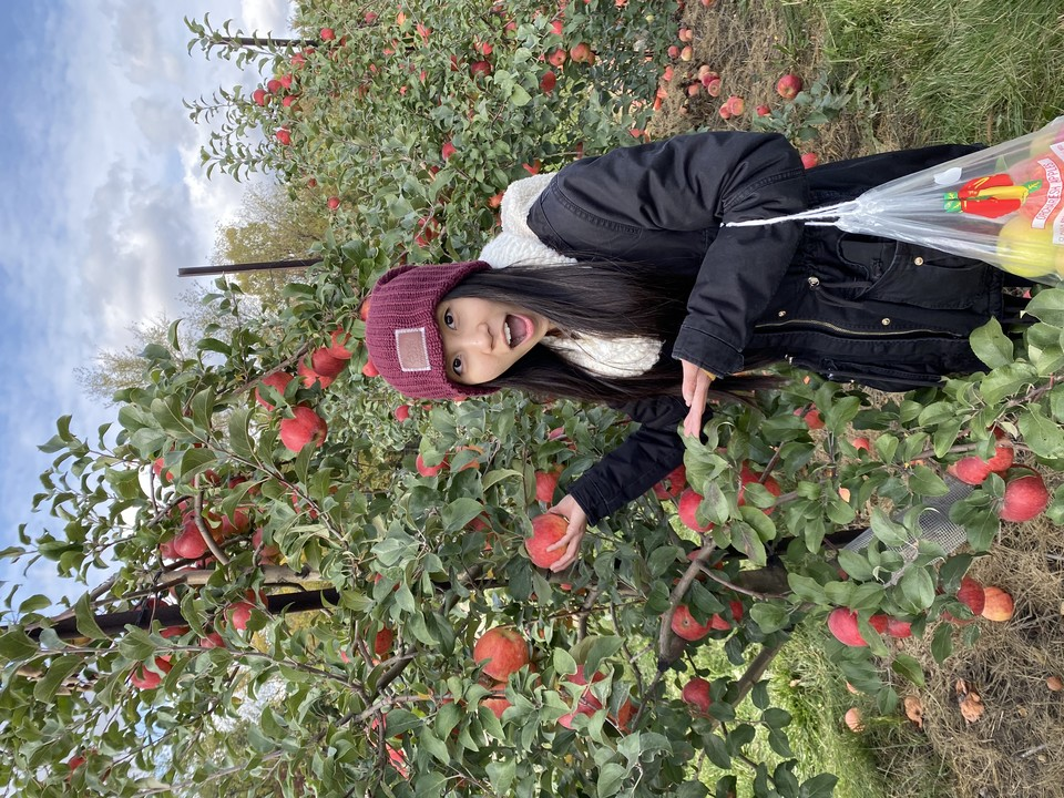 An Asian woman posing in surprise with an apple in an apple orchard.